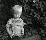 мальчик, бабочка, портрет