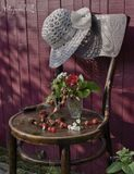 лето,стул,шляпа,ягоды,утро,земляника,