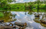 природа,лето,пейзаж,июль,река