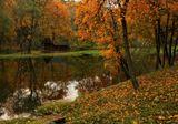 осень, поместье, пруд, листья, домик