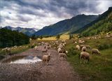 Долина р. Аксаут, КЧР, Кавказ