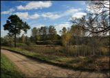 Начало октября, погожий денёк, недалеко от ст. Столбовая (Курская ж/д). Приятного просмотра!