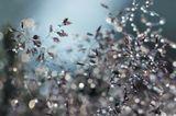 Ускользая сквозь пальцы, минуты Постепенно сольются в часы. Тает время…Так капли росы Испаряются с трав летним утром…Леночка, желаю тебе, чтобы ушедшие минуты, дни, жизнь…, уходя, оставляла самый добрый и светлый след в твоей душе и сердцах людей, которые тебя окружают!