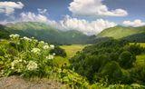 Перевал Пыв. Абхазия.