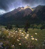 Долина р. Аксаут, Кавказ.