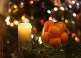 мандарины. елка, новый год