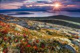 Этот солнечный вечер мы провели на невероятно красочном склоне ущелья Аку-Аку с видом на озеро Имандра. При прогулке по такому мягкому и пёстрому ковру из кустарников, ягод и мхов крышу сносит напрочь, создаётся впечатление нереальности происходящего. Россия, Кольский полуостров, горный массив Хибины, сентябрь 2013