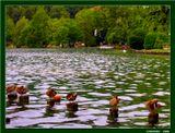 """Озеро Блед.Из серии """"Есть такая страна - Словения"""". Начало серии здесь:http://www.lensart.ru/picture-pid-575c.htm#picture"""