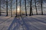 солнце, утро, зима