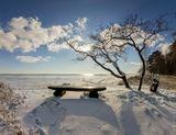 Финский залив Комарово