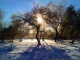 Ранним ноябрьским утром 2012 года я шел по делам и увидел такую картину.Тогда у меня ещё не было фотоаппарата.Снял на мобильный, обработал в программе Akvis.Увеличенный оригинал можно посмотреть тут:http://2.firepic.org/2/images/2014-03/30/t19o0xq3l86y.jpg