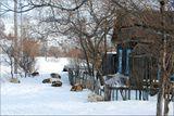 В марте на Камчатке проводится традиционные гонки на собачьих упряжках. Почти тысячу километров проходят трудяги-собаки  по снежному бездорожью . Перед стартом предварительно каюры дают возможность собачьему коллективу как следует отдохнуть. Во избежании конфликтов, собак привязывают на достаточном расстоянии друг от друга.