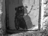 Жил был пёс.И был он на цепи.