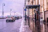 В течении одного часа:Солнце! Снег! Дождь!Привычный рисунок живой природы майского дня вСанкт-Петербурге!
