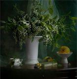 Я не поверила в примету давнюю:Цветет черемуха к похолоданию,К похолоданию, ветрам неистовым...Цветет черемуха, цветет душистая....