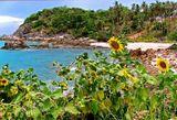 Остров Самуи, Тайланд