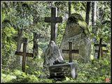 Деревенское кладбище в Латвии, не заброшенное, но очень смиренное.