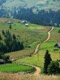 Горная дорога. Украинские Карпаты.