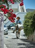 Символ Греции – трудолюбивый ослик. Ия, остров Санторини, Греция, июль 2014г.