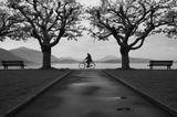 велосипед, скамейка