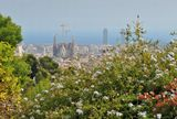 вид на город из парка Гуэль