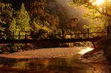 Больше фото по ссылке: http://steklo-foto.ru/photogellary