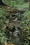 Горный ручей в ущелье на побережье Утриша.Практически единственный источник пресной воды.Сanon EOS300, Гелиос-44М-4, fuji superia 100, скан, f 5.6, выдержка 3-4 секунды (снято в сумерках)