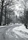 Leica MM+zeiss 50/2