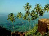 море, пальмы, путешествия,