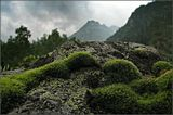 Софийское ущелье.Через мох изумрудно-зеленоного цвета на камне, видны большие горы...Другое название работы могло бы быть : Горы маленькие и горы Большие...