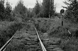 город, железная дорога, черно-белое, черно-белое фото, питер, пустырь