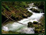 """Знаменитое ущелье Винтгар, неподалеку от озера Блед. Посещается туристами с 1893 года.Ущелье создано потоками горной реки Радовна, которая на протяжении 1600 метров  разрезает громаду гор, поросших лесом,  образует череду небольших водопадов и порогов, а заканчивается 13-метровым водопадом Шум.Из серии """"Есть такая страна - Словения"""""""