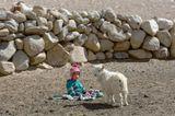 Ладакх. Индийский Тибет. Стоянка кочевников.