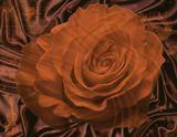 Нежный шелк цвета темного шоколада, цветы, благоухающие волшебным ароматом и с изумительным вкусом молочного шоколада, мерцающие звезды - все это сладкая музыка ночи ...ВСЕМ чудесных выходных!