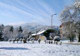 утро,город,зима.