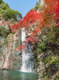 Природный парк Мино. Префектура Осака. Япония.
