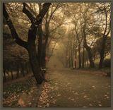 ...осень в любимом городе…