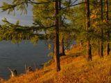 Есть в осени первоначальнойКороткая, но дивная пора —Весь день стоит как бы хрустальный,И лучезарны вечера...(Ф. Тютчев)Монголия, озеро Хубсугул, сентябрь 2006 г.Снято на закате, вечер действительно лучезарный
