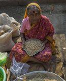 В начале 20 века тысячи крестьян Индии были спасены от голода благодаря государственной «проростковой программе».