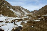 Во время перехода природы из зимнего состояния в весеннее наблюдается удивительный коричневый цвет...