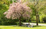 Берлин, народный парк Фридриксхайн