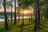 г. Курск (Россия)Copyright© Artyom Mirniy / Артём Мирный https://500px.com/r-tyomhttps://www.flickr.com/photos/r-tyomhttps://vk.com/artyommirniyhttps://www.instagram.com/artyom_mirniy
