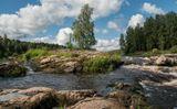 река Шуя...июнь