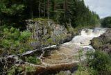 Тот же водопад Кивач на реке Суна (Карелия), что выкладывал на фото днем ранее.Здесь другой ракурс. Здесь виден первый уступ водопада.Вода в реке имеет темно-коричневый (ржавый) цвет. Говорят, что это из-за повышенного содержания железа в воде.Но скорее всего коричневый оттенок возникает из-за того, что большинство рек Южной Карелии берут свои начала из торфяных болот, что и придает темный цвет воде.