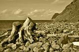 Морской берег между Абрау и Дюрсо. Осень 2016г.