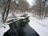 Холодный снежный январь 2006 г.