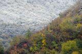 Граница сезонов в горах.Октябрь, Дагестан.