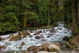 горная река, вода по чистоте первое место в европе, второе в мире!
