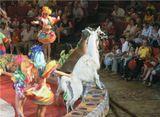 Кисловодский цирк, год примерно 2009-й...