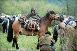 Пора перегонять стадо на новое место. Неприхотливый скарб собрали быстро. Загрузили и младшего пастушка.